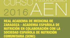 Curso Y Sesión Académica AEN 2016