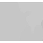 icono-saden-gris